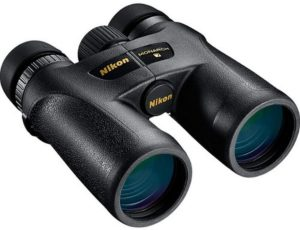 What are the Best 10x42 Binoculars